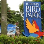 My favourite photography locations in Singapore. Part 1 Jurong Bird Park